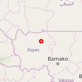 Diangounté Kamara