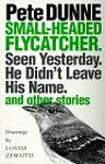 Small-Headed Flycatcher.: Seen Yesterday. He Didn't Leave His Name. and Other Stories - Pete Dunne
