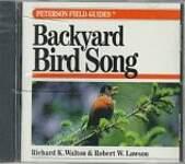 Backyard Bird Song
