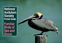 Familiar Birds of Sea and Shore