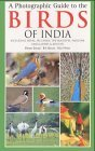 A Photographic Guide to the Birds of India: Including Nepal, Sri Lanka, the Maldives, Pakistan, Bangladesh and Bhutan