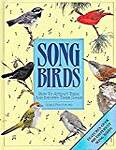 Songbirds: How to Attract Them and Identify Their Songs