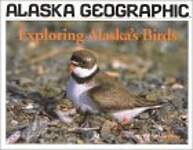Exploring Alaska's Birds