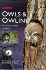 Owls  Owling in Southern Africa