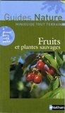 Fruits et plantes sauvages