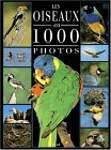 Oiseaux 1000 photos
