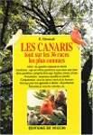 Les canaris : Tout sur les 36 races les plus connues