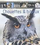 Chouettes  hiboux