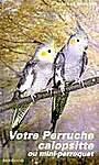 Votre perruche calopsitte ou mini-perroquet - Nicolas Deseyne