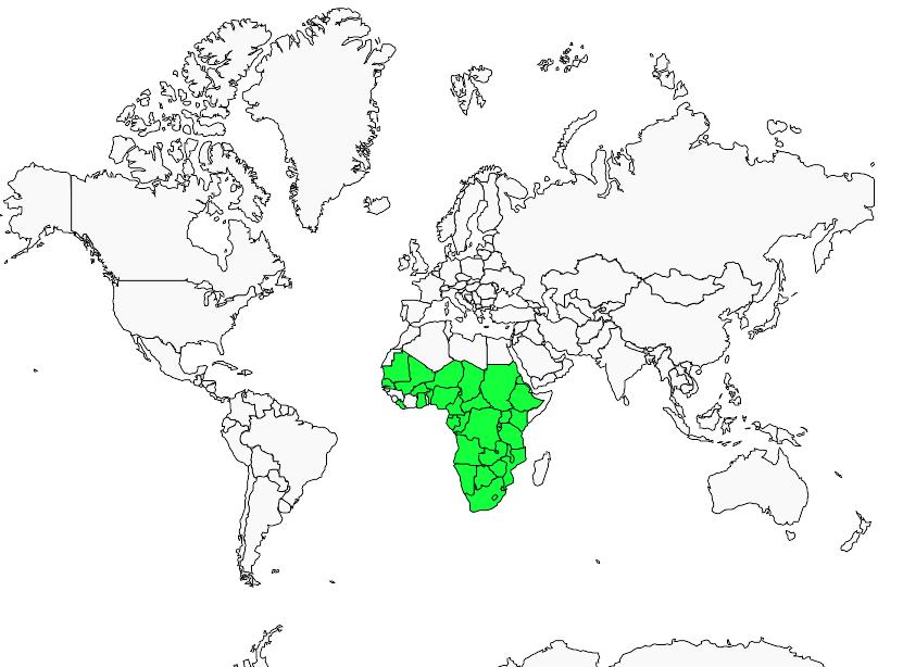 Carte de distribution de Bruant à poitrine dorée