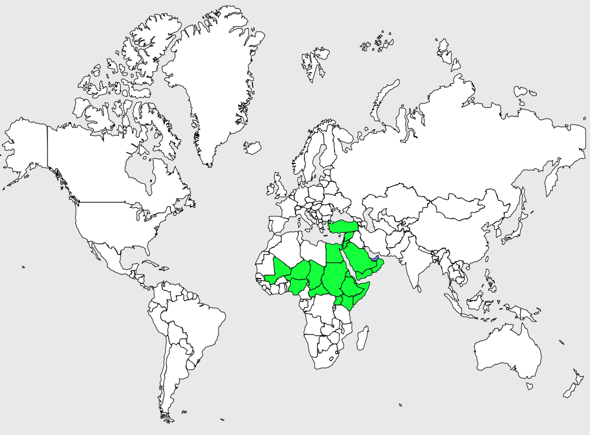 Carte de distribution de Corbeau à queue courte