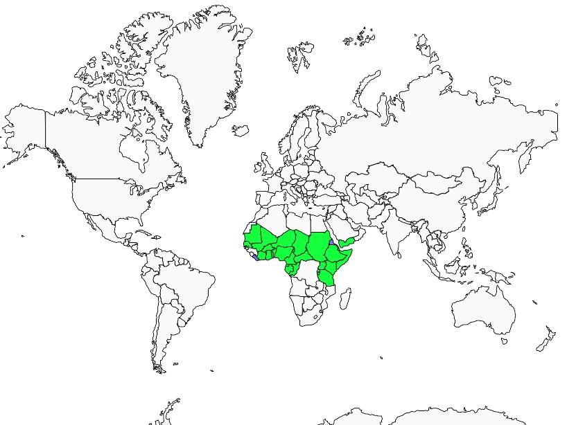 Carte de distribution de Scissor-tailed Kite